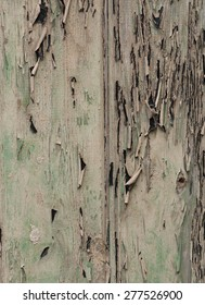 Old greed wood panels, wall background, texture