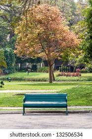 Old green bench near the fresh garden of resort.