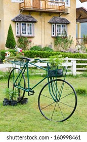 Old green bicycle in glass meadow