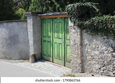 Old Green Door with Ivy