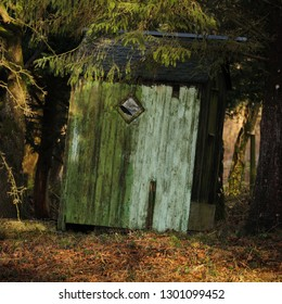 Old green painted wooden summerhouse in winter woodland, England