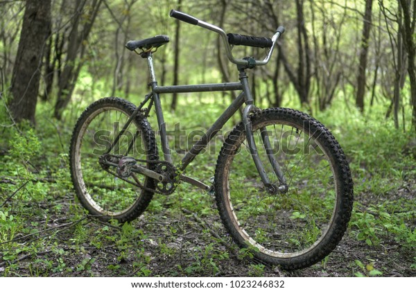 An old grey single speed bike with knobby tires standing up in the woods in the spring time.