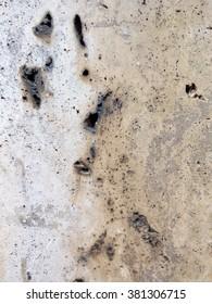 old grunge texture concrete closeup. concrete background