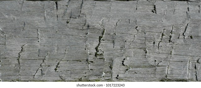 Old grunge wood texture background with cracks wooden surface rustic style
