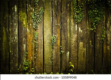 Old grunge Wood Texture with leaves