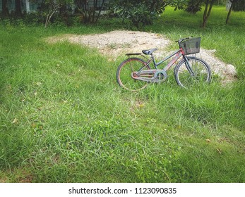 Old Grungy Bicycle Parking in the Green Grass Field