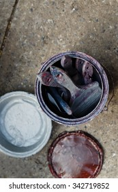 Old grungy paint cans and brushes on a sidewalk covered with red and blue paint.