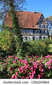Old half-timbered townhall with garden flowers and tree