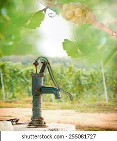 Old Hand water pump in the vineyard