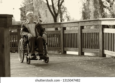 old handicapped man sitting on wheelchair in the park and looking somewhere, sepia tone