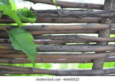 An old handmade wood fence with leaves