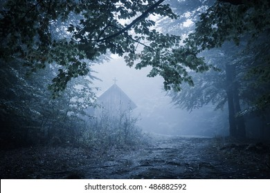 Old haunted wooden house, spooky misty foggy forest, halloween holiday celebration background concept, located in Transylvania, Romania