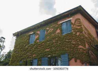 old house with green ivy on walls