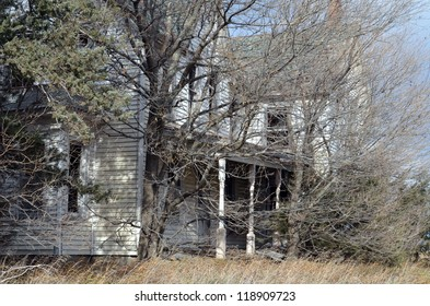 old house hidden in trees