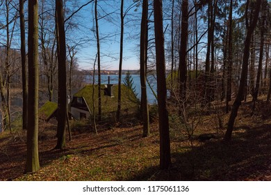 The old house in the pine wood near the lake