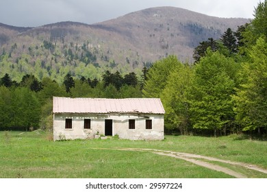 old house in the wood