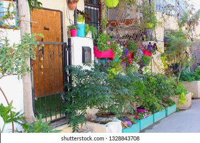 Old houses decorated with plants and bright color flowers in pots in front yard garden, Neve Tzedek quarter, Tel Aviv