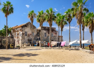 Old houses and palm trees on the square at Goree island, Dakar, Senegal