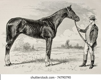 Old illustration of The Earl, winner of  the Grad Prix de Paris in 1868. Created by Janet-Lange and Cosson-Smeeton, published on L'Illustration, Journal Universel, Paris, 1868