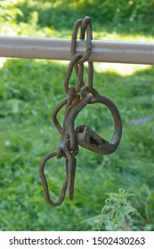 old iron shackles, rusty shackles on a natural background.