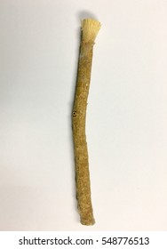 Old islamic traditional natural toothbrush Miswak (Salvadora persica) was used by the Babylonians some 7000 years ago and Greek, Roman empires and also by ancient Egyptians and Muslims