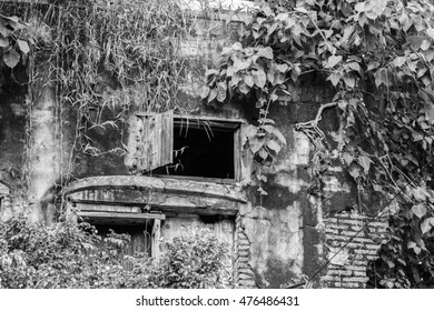 Old ivy-covered wall and window with shutters, abstract black and white background