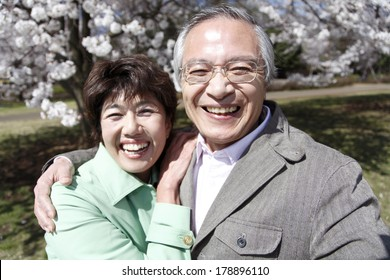 Old Japanese couple in a good relation portrait