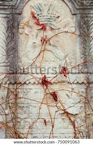 Old Jewish Cemetery Religious Symbols Flowers Stock Photo Edit Now