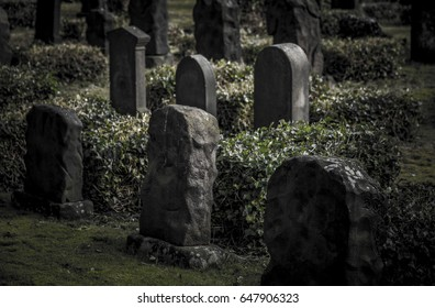 The old jewish graves. Shot in Denmark