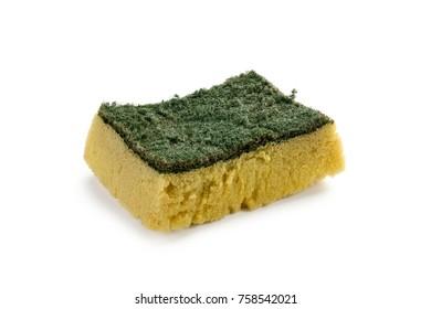 Old kitchen sponge isolate on white background.