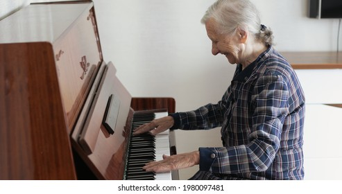 An old lady with gray hair plays the piano. A grandmother with deep wrinkled fingers presses the white keys of a musical instrument.