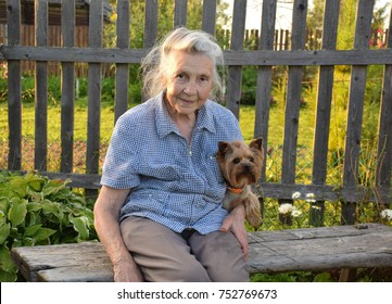 The old lady sits on a bench and hugs her favorite dog. Yorkshire Terrier loves his mistress very much