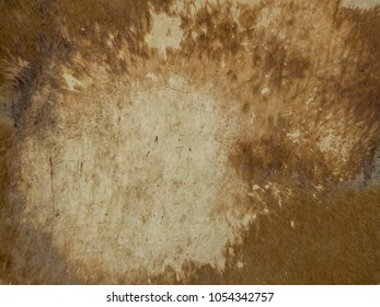 Old leather texture - leather surface of old drum.