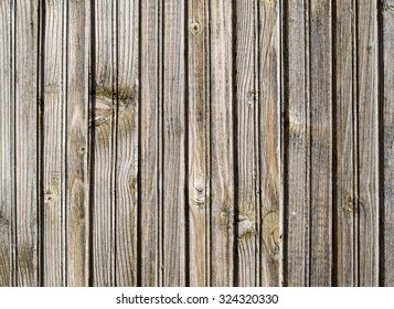 Old light lacquered wood wall closeup in sunny day
