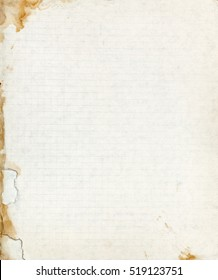 Old lined school paper sheet with torn stained border