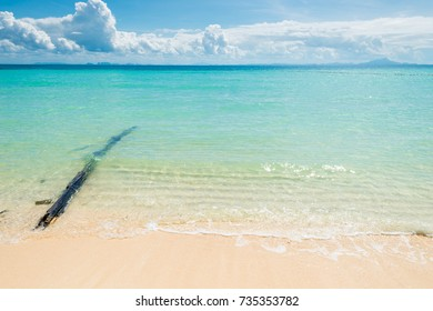 old log in the Andaman Sea, beautiful natural background, Thailand landscape