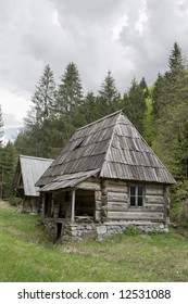 old log cabin in forest
