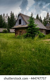 Old log cabin in the forest