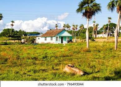 Old log cabin in a remote Cuban countryside and natural environment. Many Cubans live in wooden huts on the countryside.