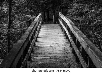 The Old Lonely Bridge