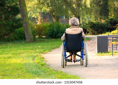 old lonely woman on wheelchair in the park - view from back