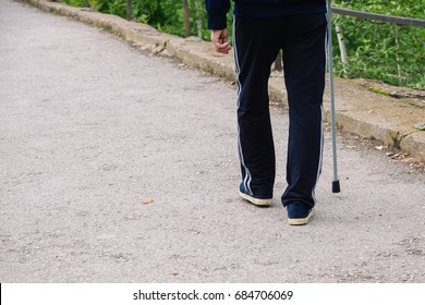 Old man with a cane. Natural. Man with a stick. Back view. Space for text