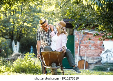 Old man drives his wife in garden cart.They making fun and joying at the backyard.