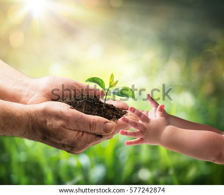 Old Man Giving Young Plant To A Child - Environment Protection For New Generation