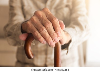 Old man hands on walking stick