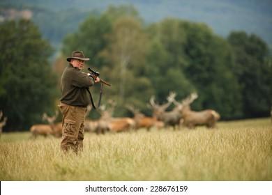alter Jäger, der auf der Wiese auf seine Trophäe wartet, Jäger mit seinem Gewehr im Frühjahrswald, Jäger, der ein Gewehr hält und auf Beute wartet, Jäger, der auf die Jagd geht und schießt, Gamekeeper