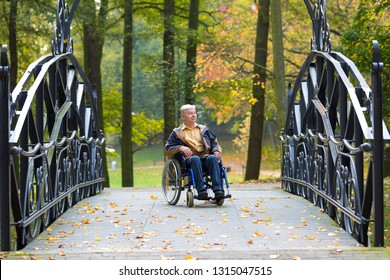 old man on wheelchair in the colorful autumnal park - outdoor scene