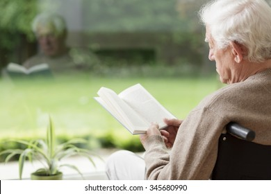 Old man on wheelchair reading a book
