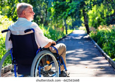 old man on wheelchair on the wooden path in the park. side view