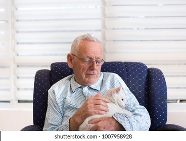 Old man in pajamas sitting in armchair at home and cuddling white sweet cat. Alternative therapy concept